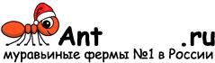 Муравьиные фермы AntFarms.ru - Тверь